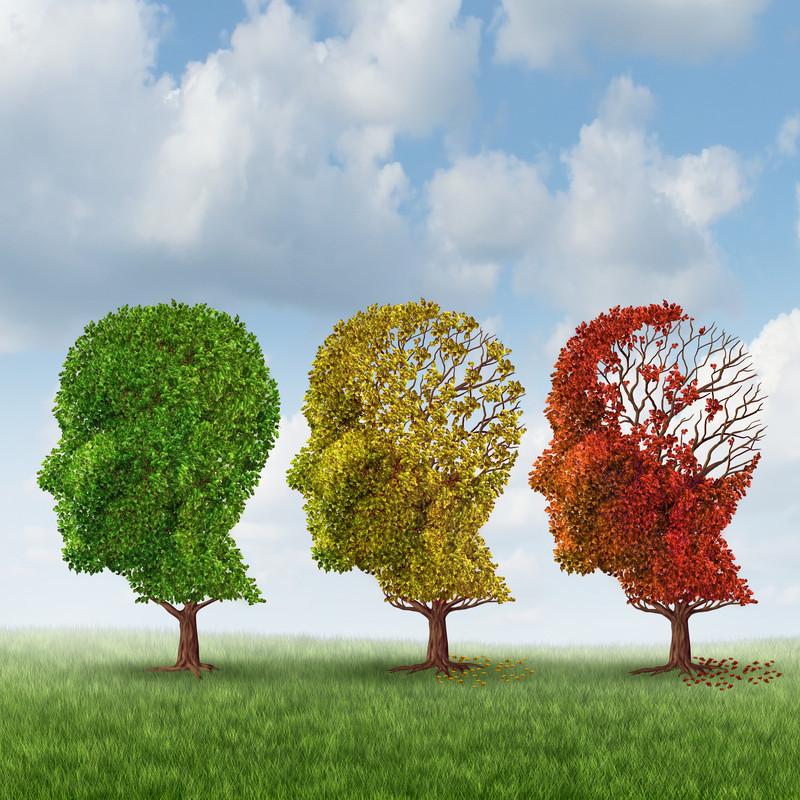 Casa de Repouso - as fases da doença de alzheimer