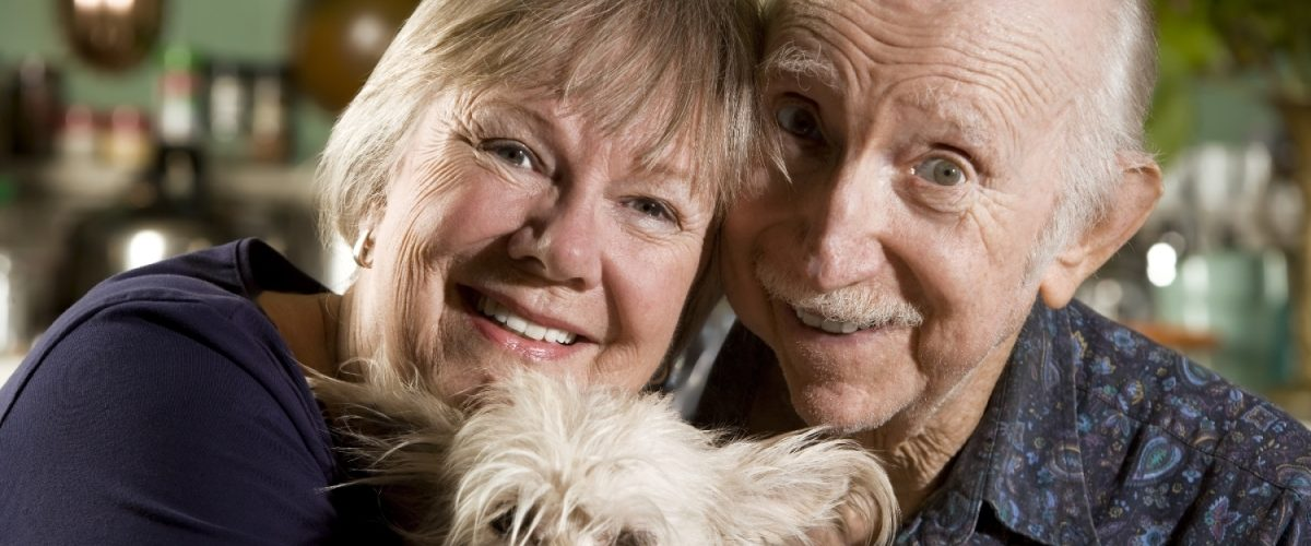 Cachorros e idosos: Amor e Saúde em Dobro