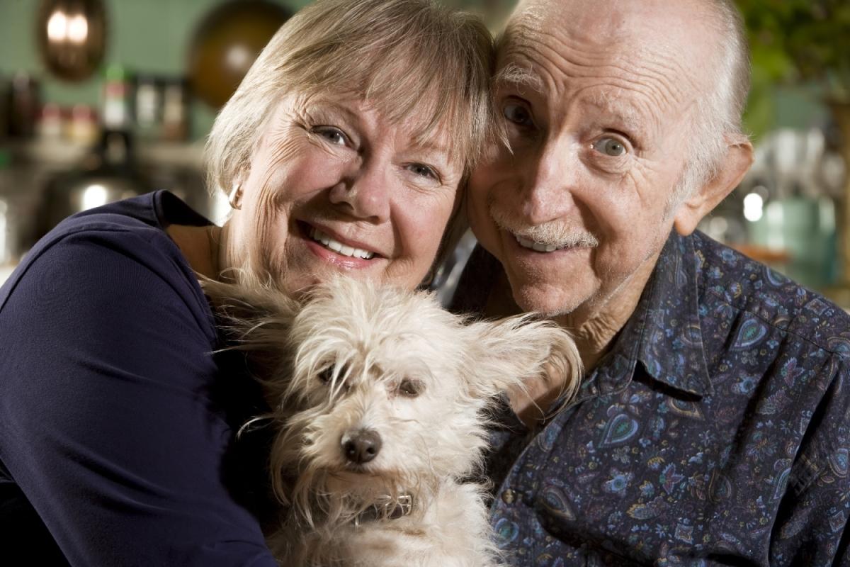 Cachorro e idosos: amor e saúde em dobro