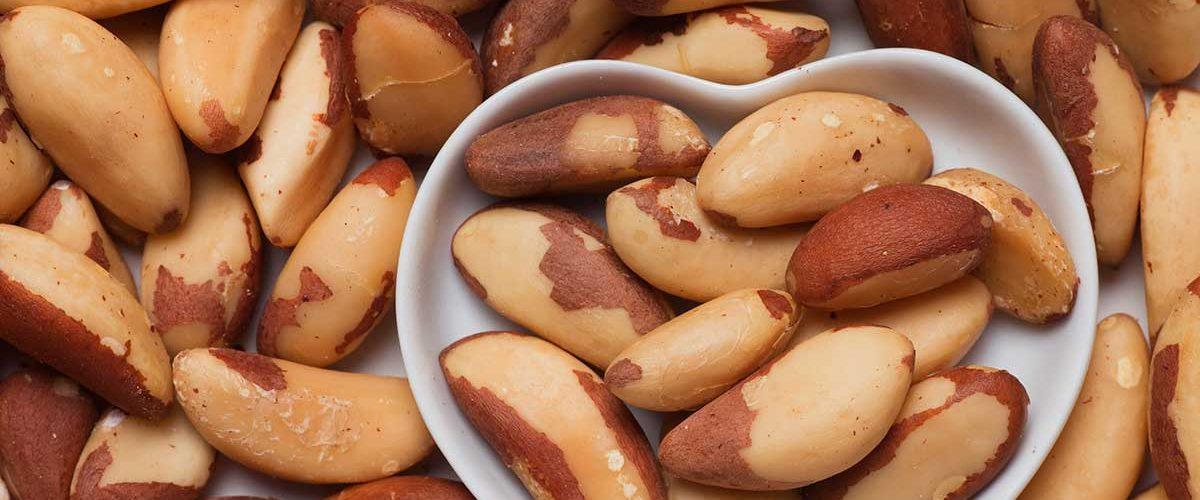 Veja 7 benefícios da castanha do Pará para o envelhecimento