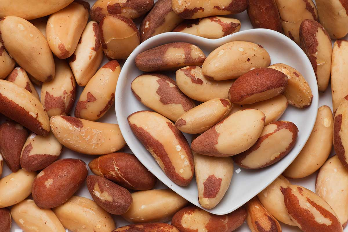 7 alimentos essenciais contra o alzheimer