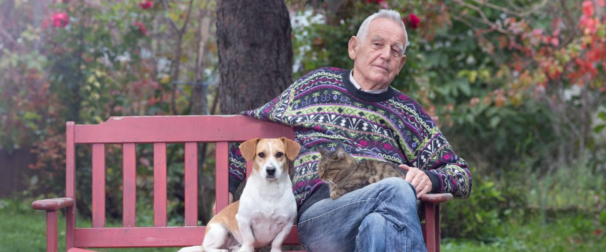 A importância dos animais para os idosos